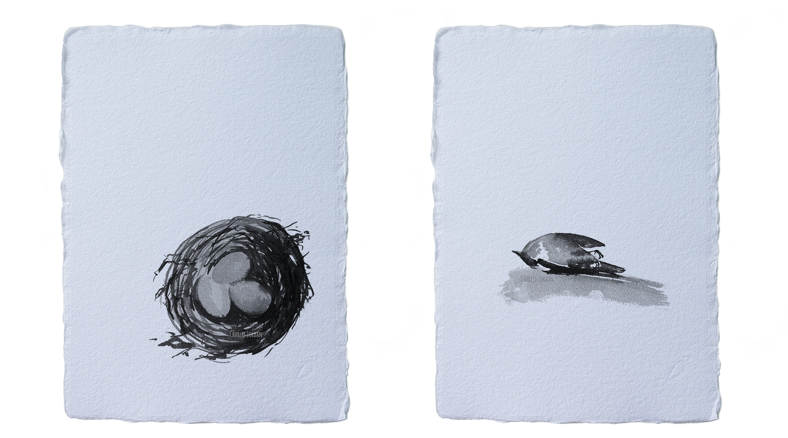 un par de las ilustraciones originales para el proyecto