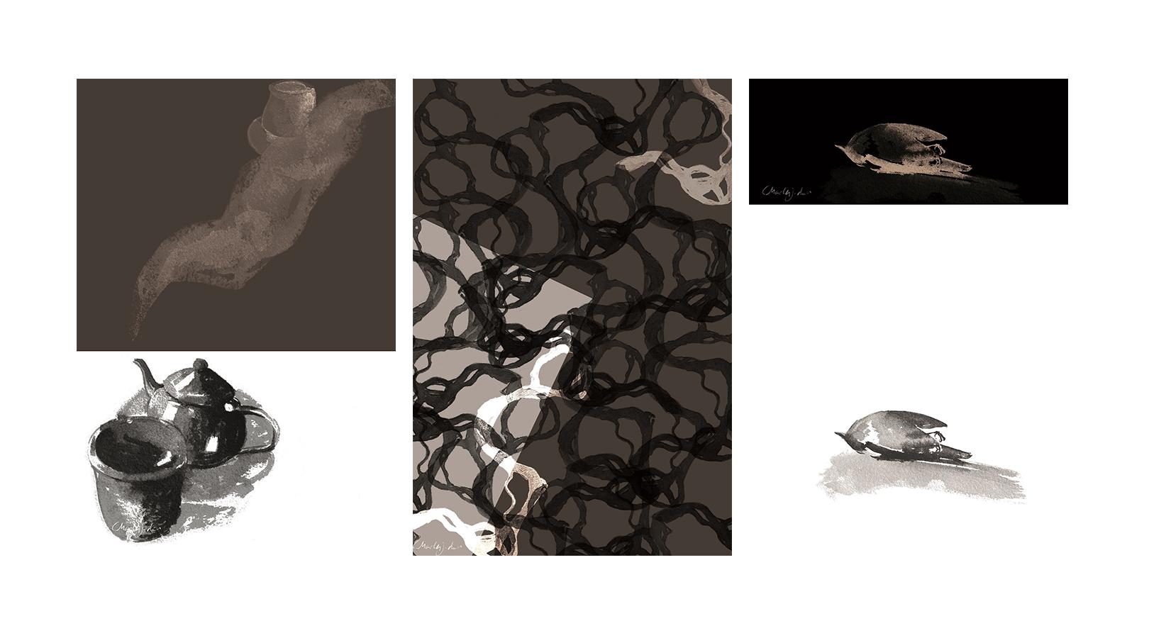 composición con algunas de las ilustraciones revisadas